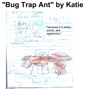 "Vote for ""But Trap Ant"" by Katie"
