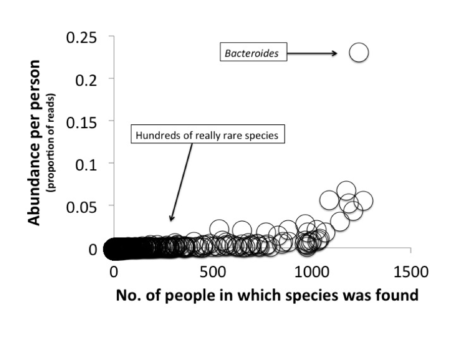 Abundance freq microbes