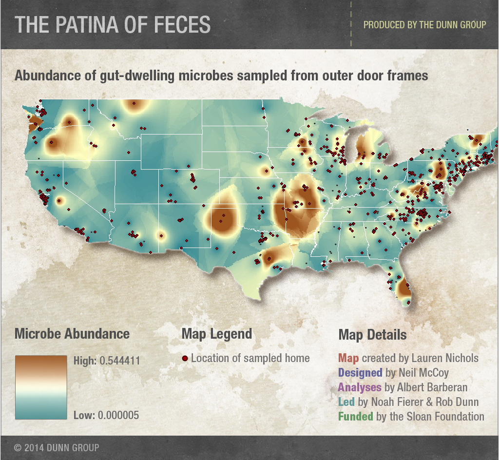 The Patina of Feces