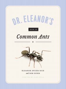 And So, To Answer That Question Of What You Should Do If You Have Ants In  Your Kitchen? Buy Eleanoru0027s Books. Read About The Most Common Ants.