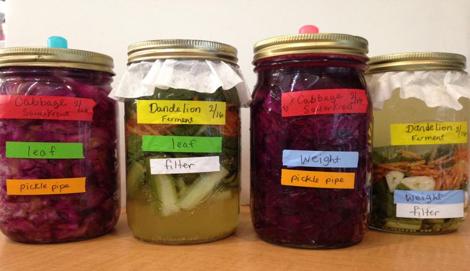 Museum-fermentations
