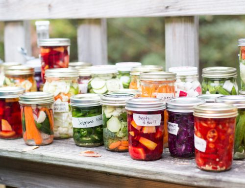 Fermented Foods: Harnessing the Power of Microorganisms